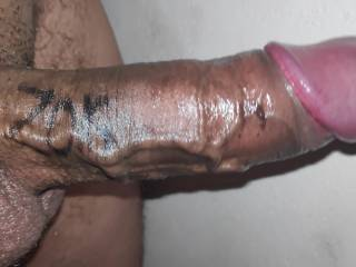 Thick cock ready to cum