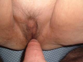 love to slide my throbbing cock deep inside of her hungry pussy