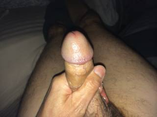 The dick getting stroked