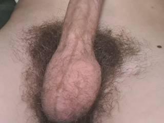 My hairy Penis