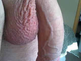horny for that big limp cock  i'll suck it till its hard then fuck it till its soft again