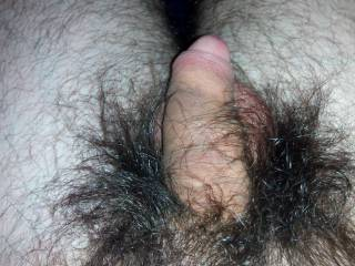 hairy, natural, a lot hairy